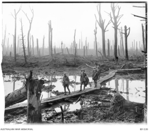 Western Front (Belgium), Menin Road Area, Chateau Wood 29 October 1917